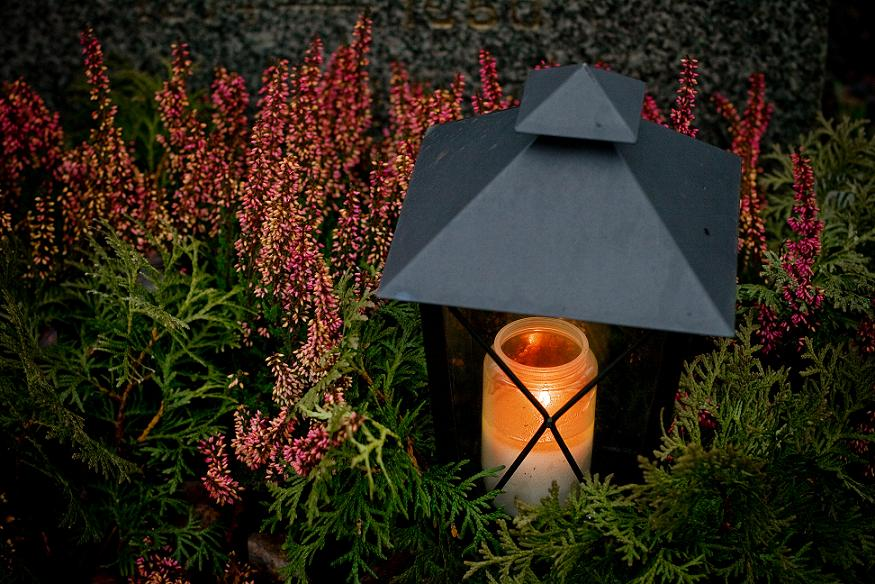 Img luz jardin