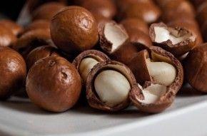 Img macadamia nuts arti