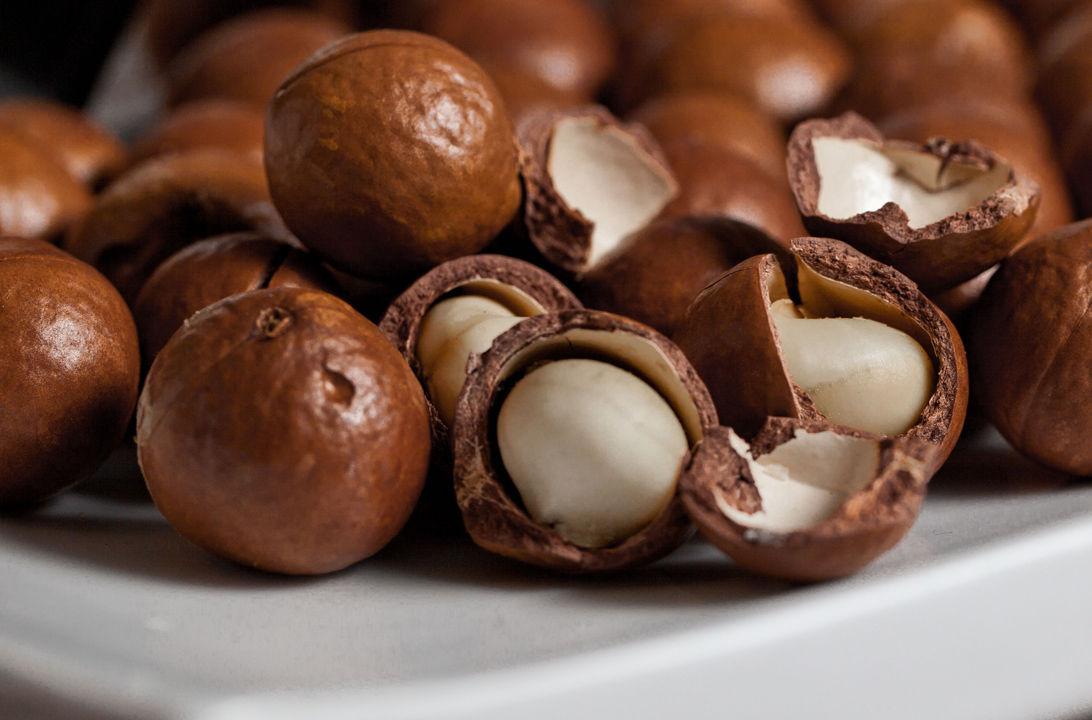 img_macadamia nuts hd
