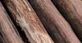Img madera