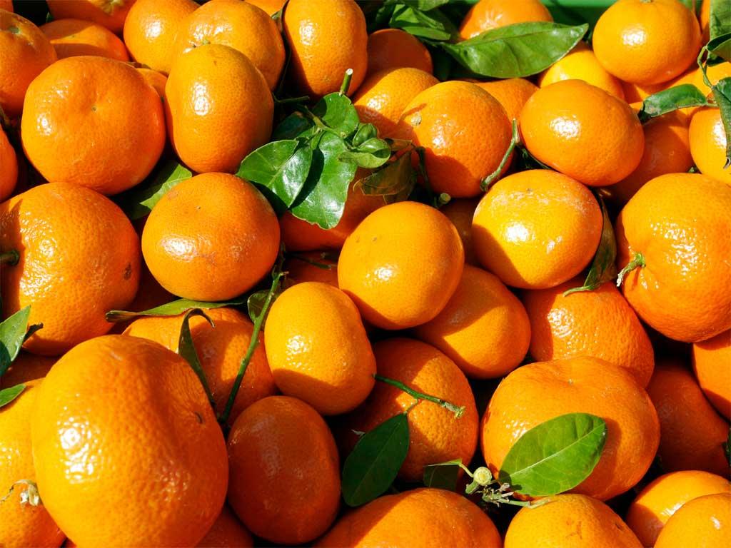 Img mandarinas