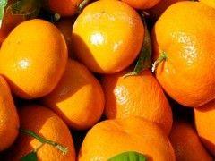 Img mandarinas1