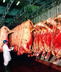2. irud. meat.