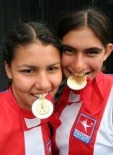Img medallas articulo