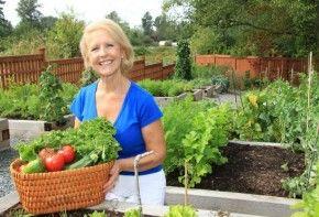Img menopausia dieta