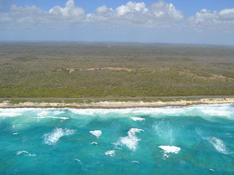 Img mexico reserva biosfera