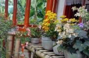 Img microclimas jardin list