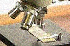 Img microscopio1