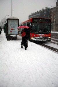 Img nevada