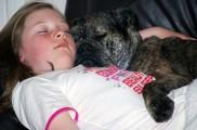 img_nina perro dormir television listado