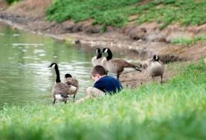 Img nino patos 3