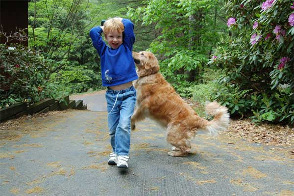img_nino perro 1