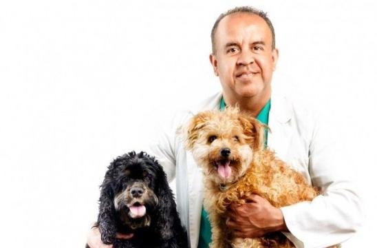 img_nutricionista perros carlos alberto gutierrez listg