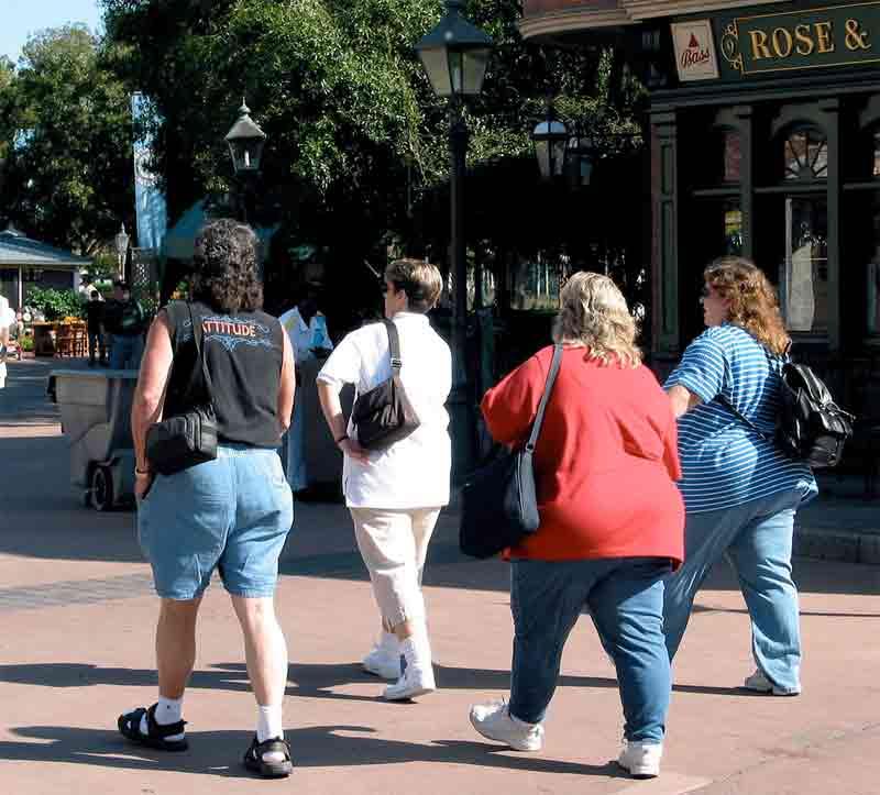 Img obesidad
