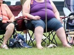 Img obesidad2