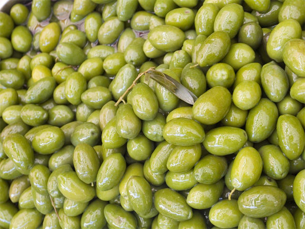 Img olivas