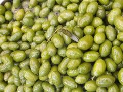 Img olivas1