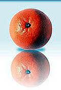 Img orange1