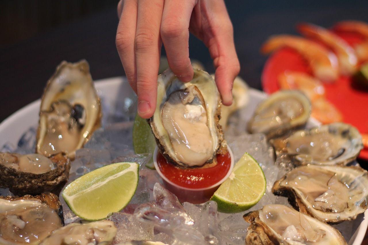 Img ostras moluscos preparar hd