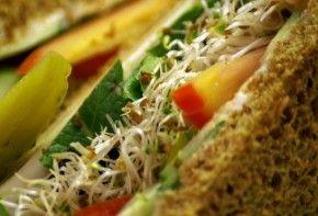 Img pan sandwich