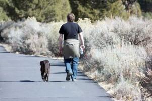 Img pasear perros agua salud enfermedades hombres art