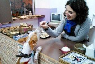 Img pasteleria perros perruna reposteria animales mascotas madrid barcelona mascotas animales galletas art