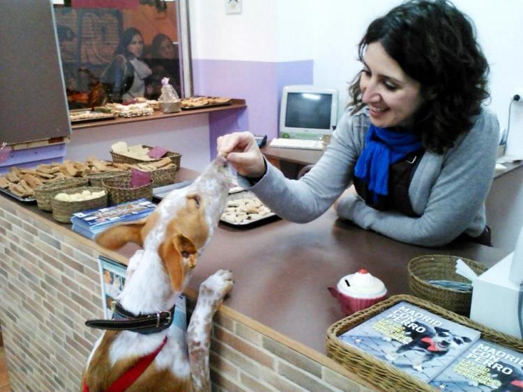 Img pasteles perros miguitas art