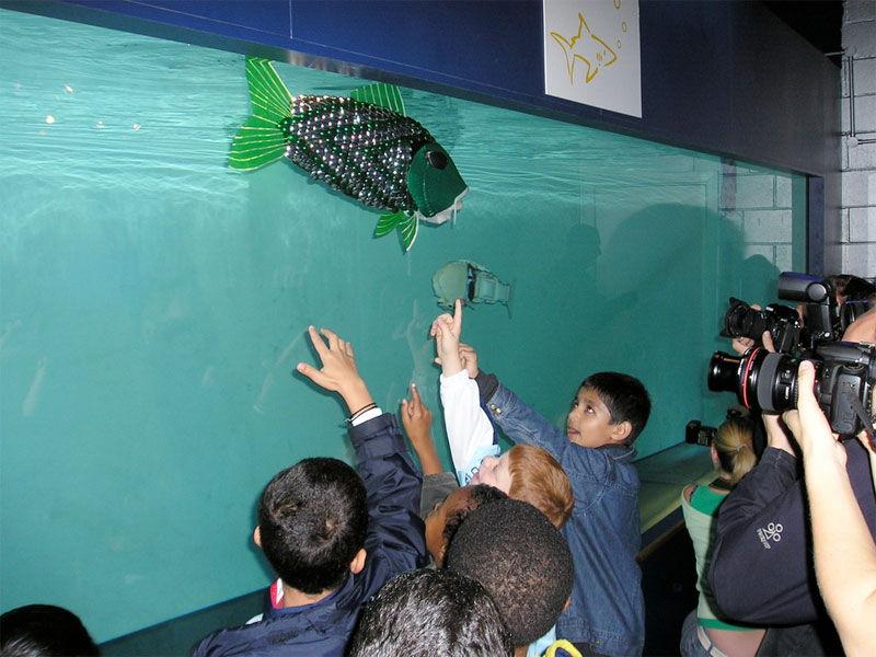 Img peces robot