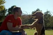 img_perro amopeque ajpg