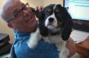 Img perro ordenador comprar internet comida mascotas listado