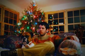 Img perro propositos nuevo ano animales art