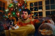 Img perro propositos nuevo ano animales listado