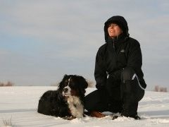 Img perro nieve montana art