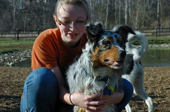Img perros adoptar ancianos animales mascotas adopcion rescatar amor listg