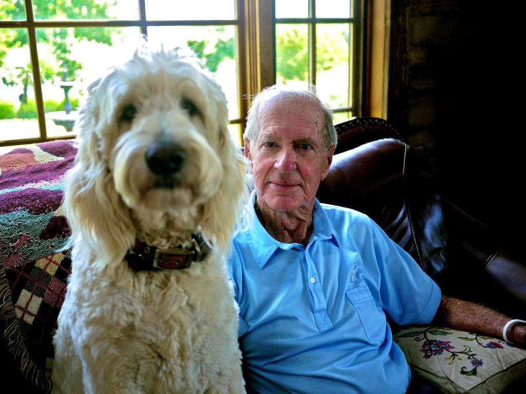 img_perros ancianos salud