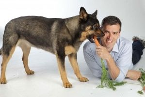 Img perros comida alimentacion natural mascotas cocina casera verdura frutas art