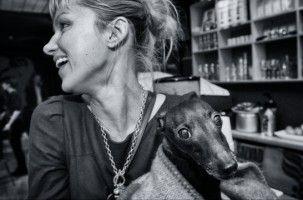Img perros diabetes enfermedades curan tratamientos alimentos animales mascotas art