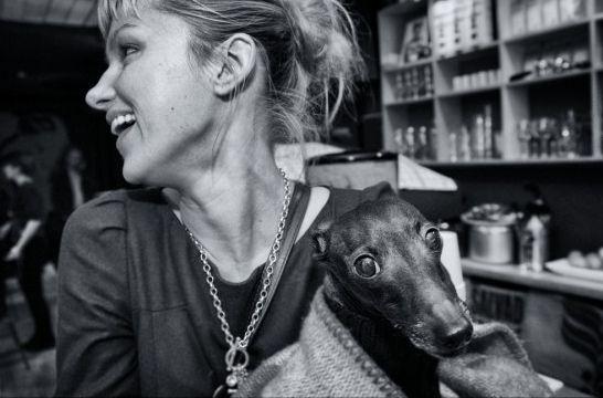 Img perros diabetes enfermedades curan tratamientos alimentos animales mascotas listg