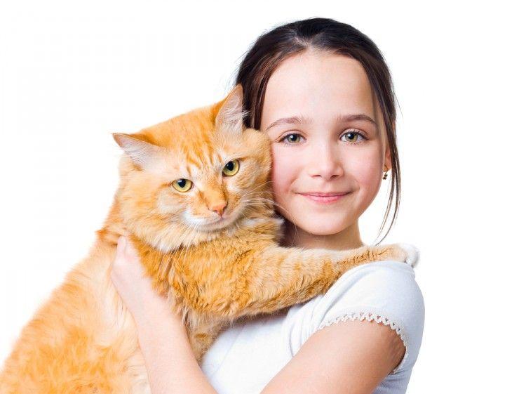 Img perros gatos calman ninos reducen estres2 art