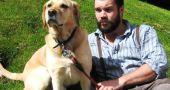 img_perros grandes adoptar adopciones animales mascotas