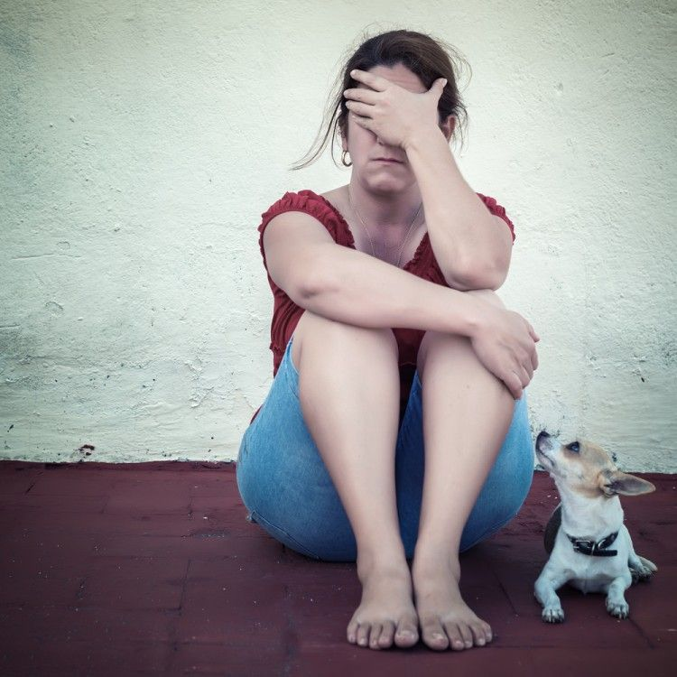 Img perros humanos depresion art