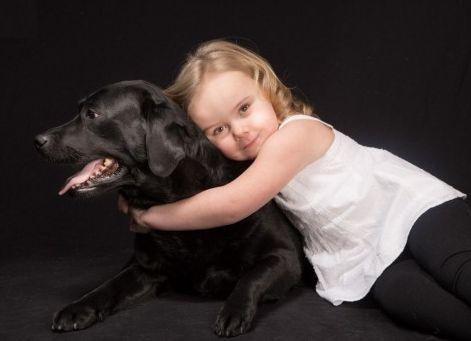 Img perros negross 1 art