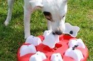 Img perros puzles rompecabezas juegos mascotas juguetes mascotas listado