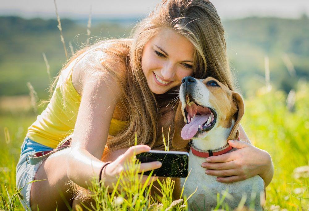 Img perros telefono aplicaciones fotografia