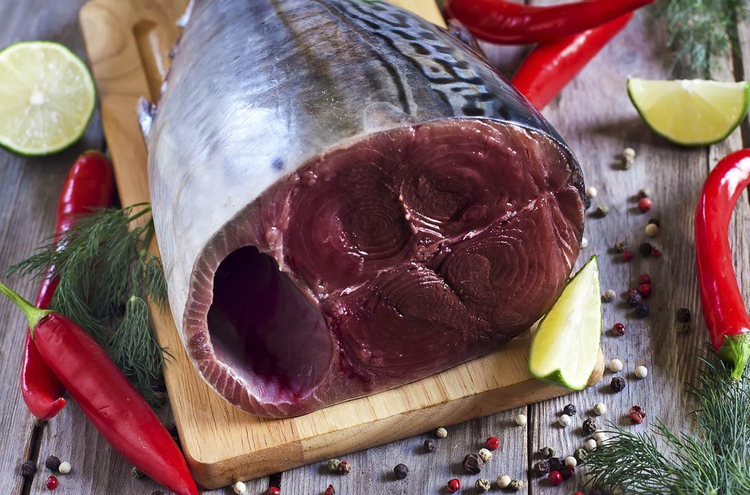 Img pescado azul engorda mas hd