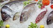 Img pescado fresco sa hd