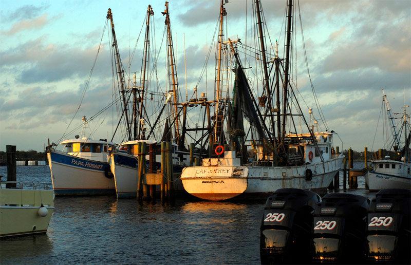 Img pesqueros