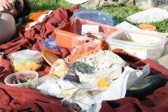 Img picnic1 1
