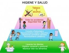 Img piramide higiene cara4 higiene art