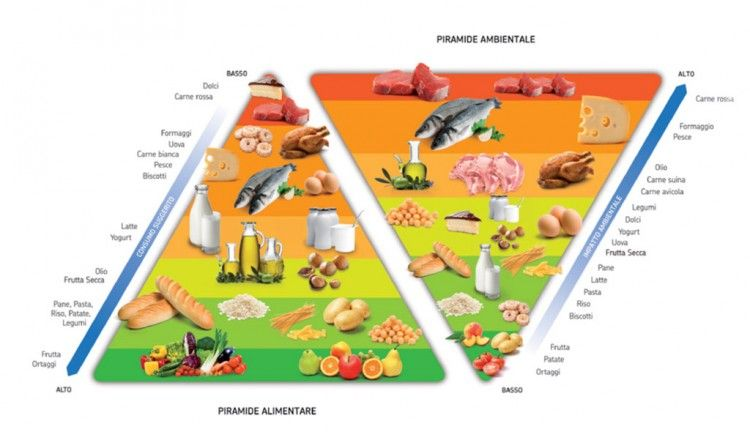 Img piramide alimenticia